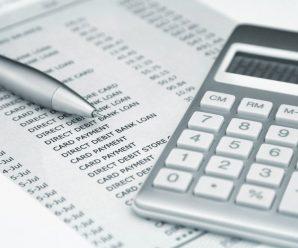 Бухгалтерские и налоговые консультации ИП